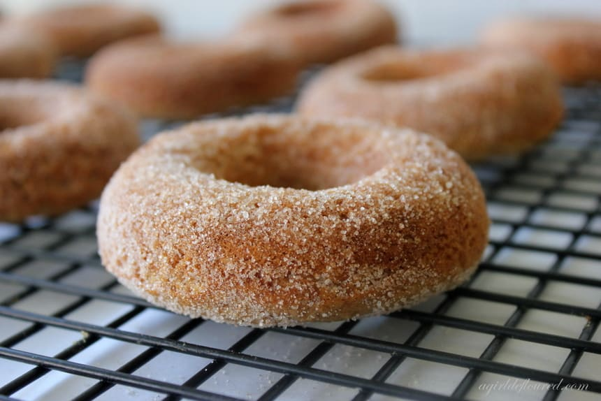 recipe: where to buy apple cider donuts [29]