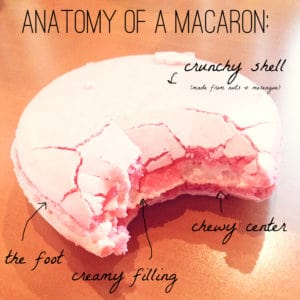 parts of a perfect macaron