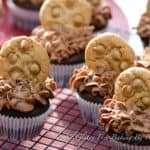 chocolate peanut butter chip cupcakes